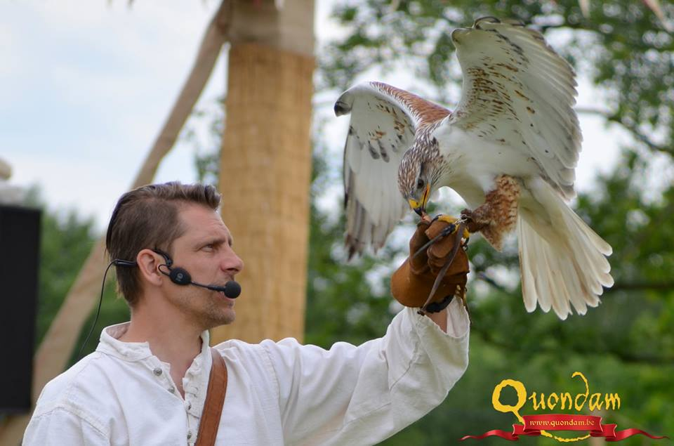 Falconers@Work - Pim met Kliko